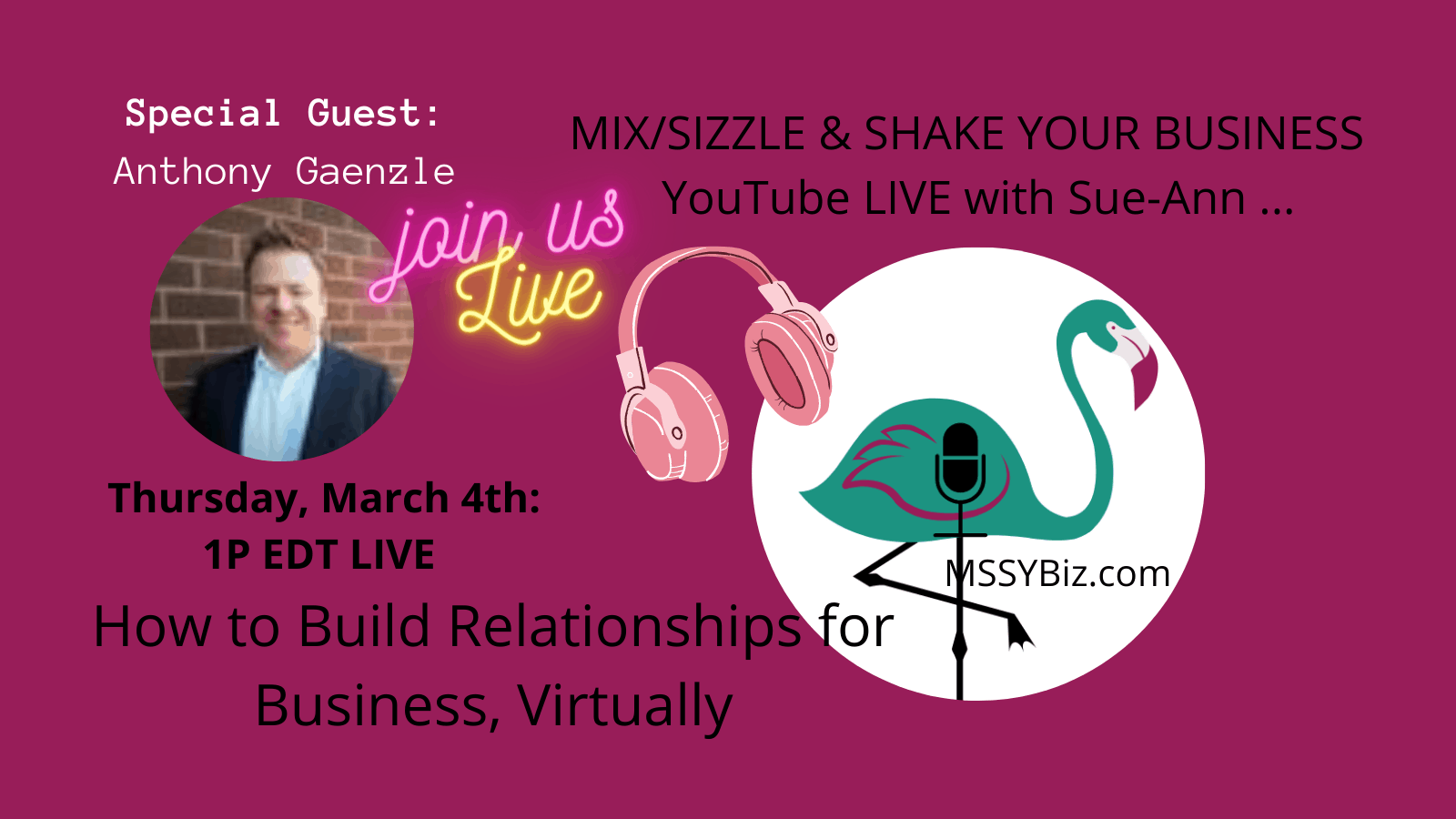 Building Business Relationships, Digitally with Anthony Gaenzle by Sue-Ann for MSSYBiz dot com.